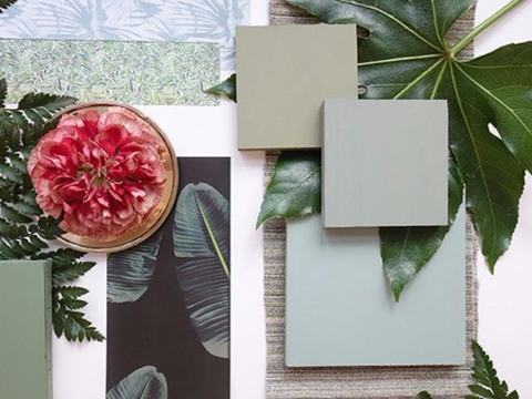 Maximising space in your interiors - tips from award winning Dublin interior design studio, Maria Fenlon. Image shows flatlay with colourful plants