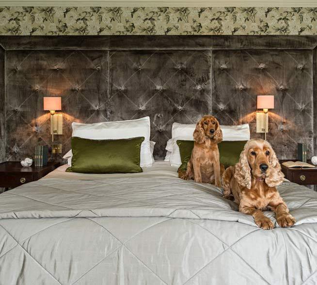 Co. Kildare Period Property - Maria Fenlon interior design - Cosy bedroom interior with spaniels